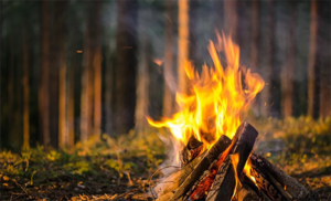 Экспертиза причин пожара